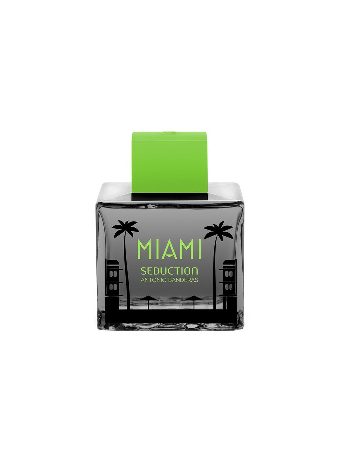 Seduction In Black Miami...
